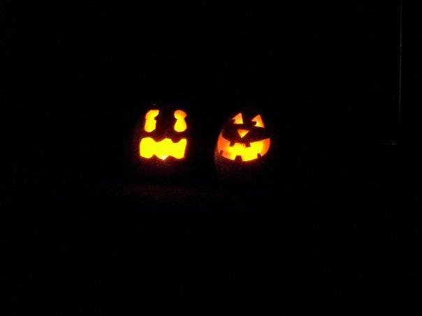 pumpkins2008.jpg